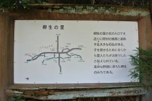 DSC_7105