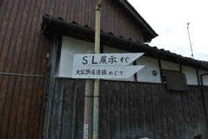 DSC_7997